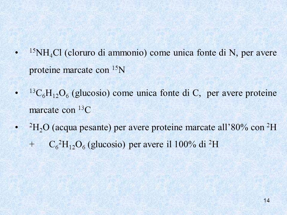 14 15 NH 4 Cl (cloruro di ammonio) come unica fonte di N, per avere proteine marcate con 15 N 13 C 6 H 12 O 6 (glucosio) come unica fonte di C, per av