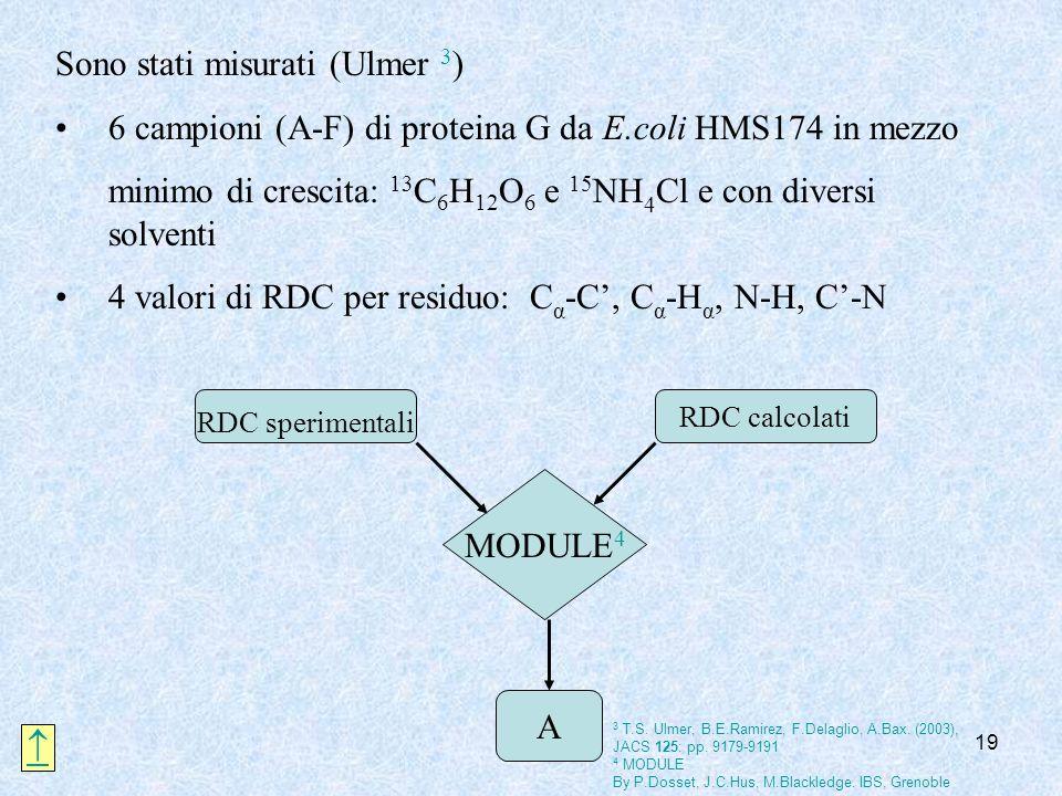 19 Sono stati misurati (Ulmer 3 ) 6 campioni (A-F) di proteina G da E.coli HMS174 in mezzo minimo di crescita: 13 C 6 H 12 O 6 e 15 NH 4 Cl e con dive