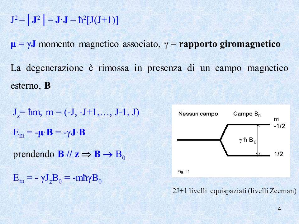4 J 2 =J 2 = JJ = ħ 2 [J(J+1)] μ = γJ momento magnetico associato, γ = rapporto giromagnetico La degenerazione è rimossa in presenza di un campo magne
