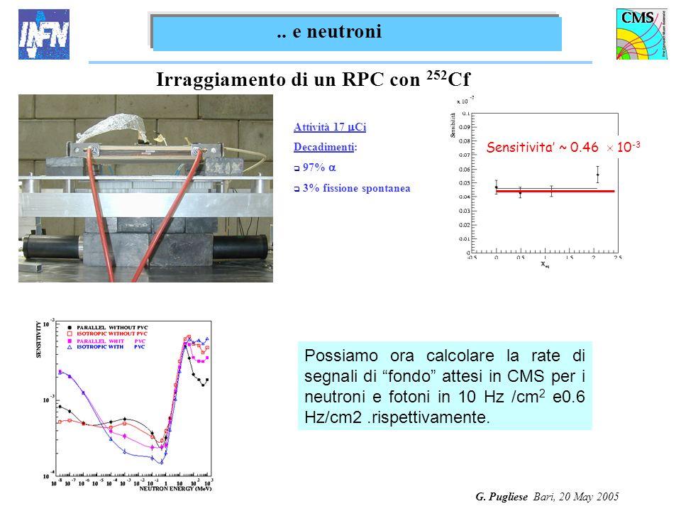 G. Pugliese Bari, 20 May 2005 Irraggiamento di un RPC con 252 Cf Sensitivita ~ 0.46 10 -3.. e neutroni Attività 17 Ci Decadimenti: 97% 3% fissione spo