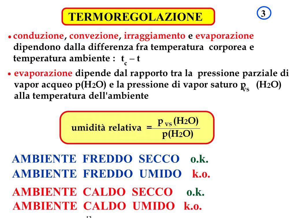 TRASMISSIONE DEL CALORE 12 TERMOREGOLAZIONE 3 conduzione,convezione,irraggiamento eevaporazione dipendono dalla differenza fra temperatura corporea e