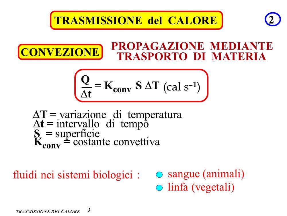 TRASMISSIONE DEL CALORE TRASMISSIONE del CALORE 3 4 CONDUZIONE PROPAGAZIONE SENZA TRASPORTO DI MATERIA Q t = K T (cal s –1 ) S d S = superficie t = intervallo di tempo d = distanza K = conducibilità termica T = variazione di temperatura MATERIALI DIVERSI K (kcal m –1 s –1 °C –1 ) rame ghiaccio acqua 9.2 10 –2 5.2 10 –4 1.4 10 –4 legno polistirolo aria 0.3 10 –4 9.3 10 –6 5.5 10 –6