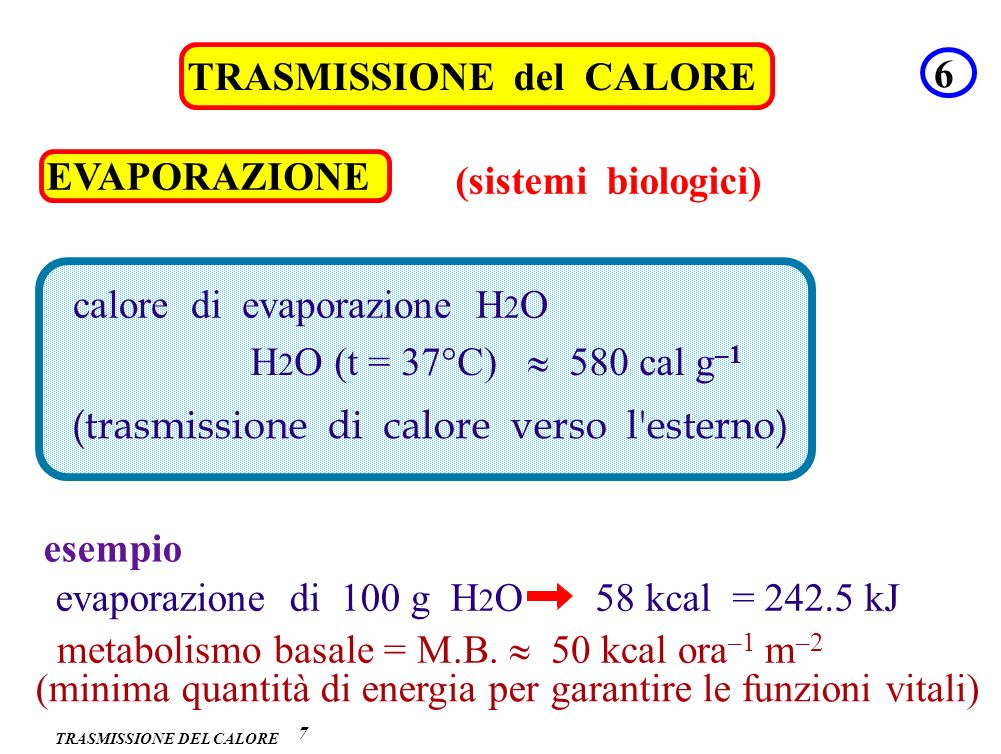 TRASMISSIONE DEL CALORE 7 TRASMISSIONE del CALORE 6 EVAPORAZIONE (sistemi biologici) calore di evaporazione H 2 O (trasmissione di calore verso l'este