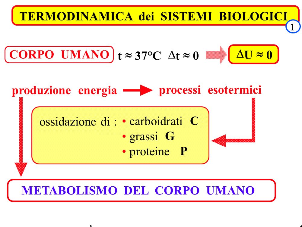 TRASMISSIONE DEL CALORE TERMODINAMICA dei SISTEMI BIOLOGICI 8 1 CORPO UMANO t 37°C t 0 U 0 processi esotermici produzione energia ossidazione di : car