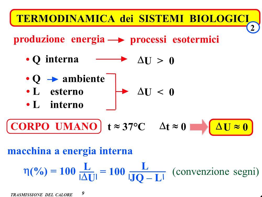 . 9 TERMODINAMICA dei SISTEMI BIOLOGICI 2 processi esotermici produzione energia Q interna U > 0 Q ambiente L esterno L interno U < 0 CORPO UMANO t 37
