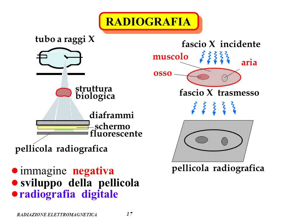 RADIAZIONE ELETTROMAGNETICA RADIOGRAFIA 17 tubo a raggi X struttura biologica diaframmi schermo fluorescente pellicola radiografica fascio X trasmesso