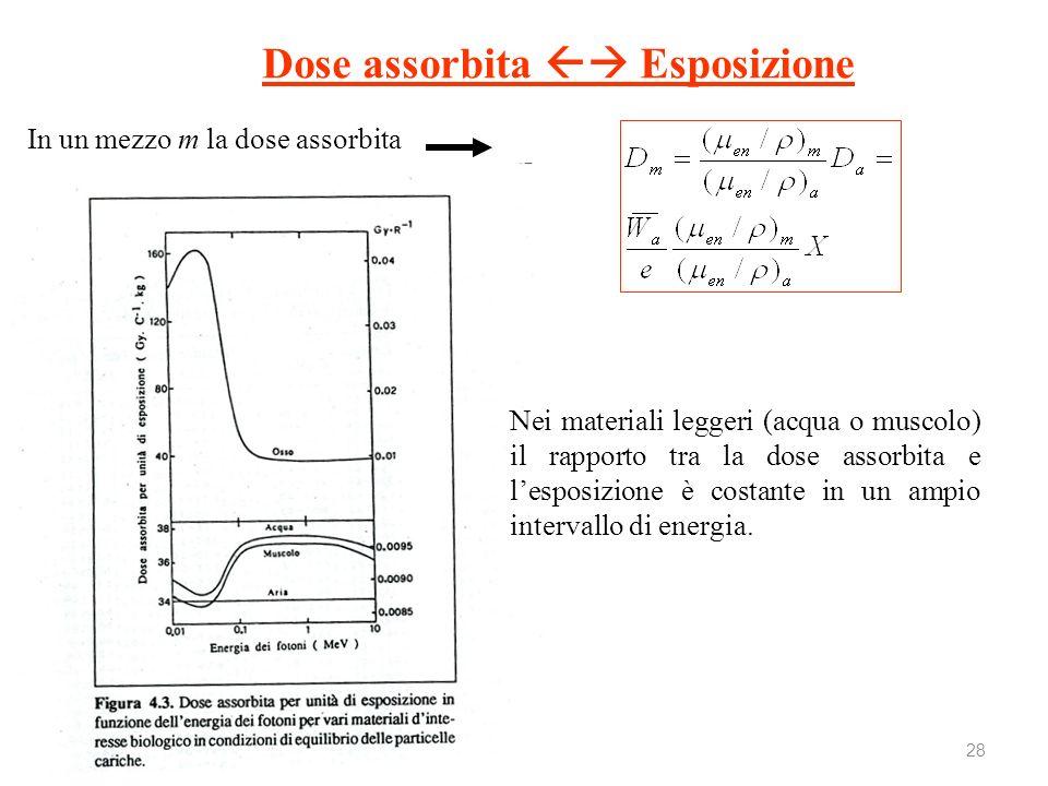 28 Nei materiali leggeri (acqua o muscolo) il rapporto tra la dose assorbita e lesposizione è costante in un ampio intervallo di energia. Dose assorbi