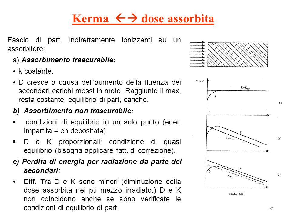 35 Kerma dose assorbita Fascio di part. indirettamente ionizzanti su un assorbitore: a) Assorbimento trascurabile: k costante. D cresce a causa dellau