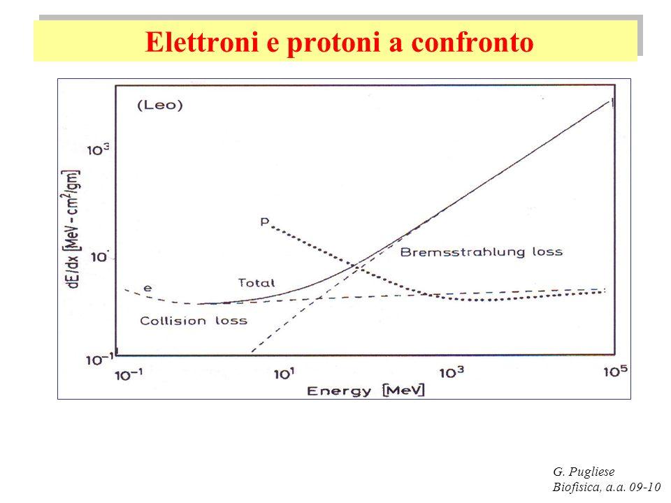 Elettroni e protoni a confronto G. Pugliese Biofisica, a.a. 09-10