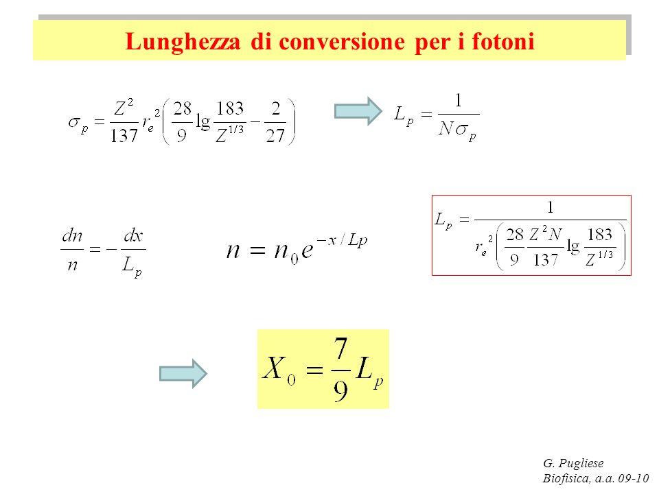 Lunghezza di conversione per i fotoni G. Pugliese Biofisica, a.a. 09-10