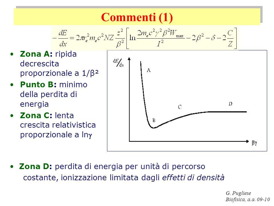 Commenti (1) G. Pugliese Biofisica, a.a. 09-10 Zona A: ripida decrescita proporzionale a 1/β² Punto B: minimo della perdita di energia Zona C: lenta c