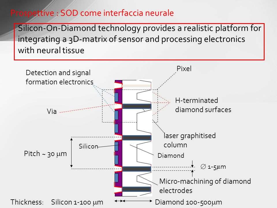 Prospettive : SOD come interfaccia neurale Silicon-On-Diamond technology provides a realistic platform for integrating a 3D-matrix of sensor and proce