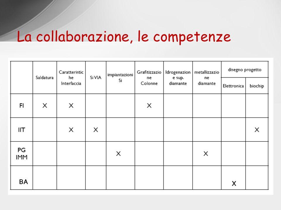 La collaborazione, le competenze BA X