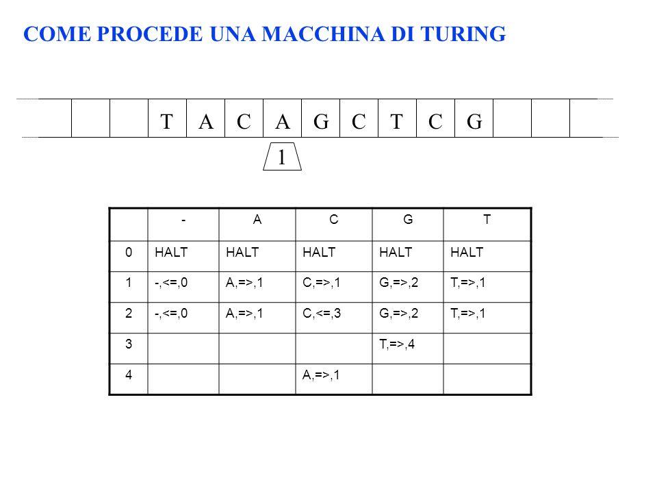 COME PROCEDE UNA MACCHINA DI TURING AACGCTTGC 1 -ACGT 0HALT 1-,<=,0A,=>,1C,=>,1G,=>,2T,=>,1 2-,<=,0A,=>,1C,<=,3G,=>,2T,=>,1 3T,=>,4 4A,=>,1