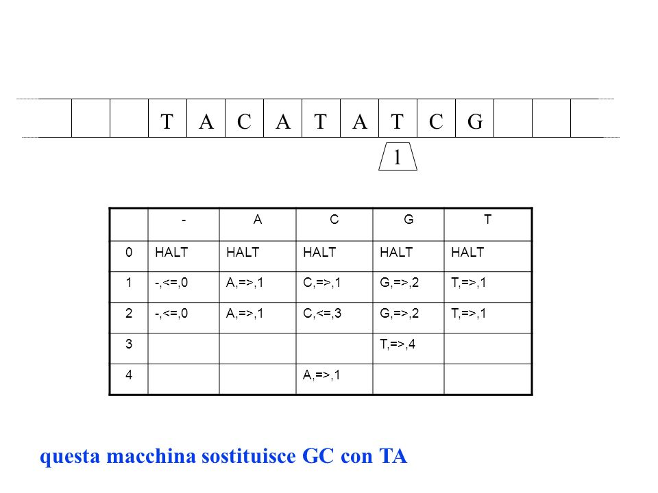 AAATCTTGC 1 -ACGT 0HALT 1-,<=,0A,=>,1C,=>,1G,=>,2T,=>,1 2-,<=,0A,=>,1C,<=,3G,=>,2T,=>,1 3T,=>,4 4A,=>,1 questa macchina sostituisce GC con TA