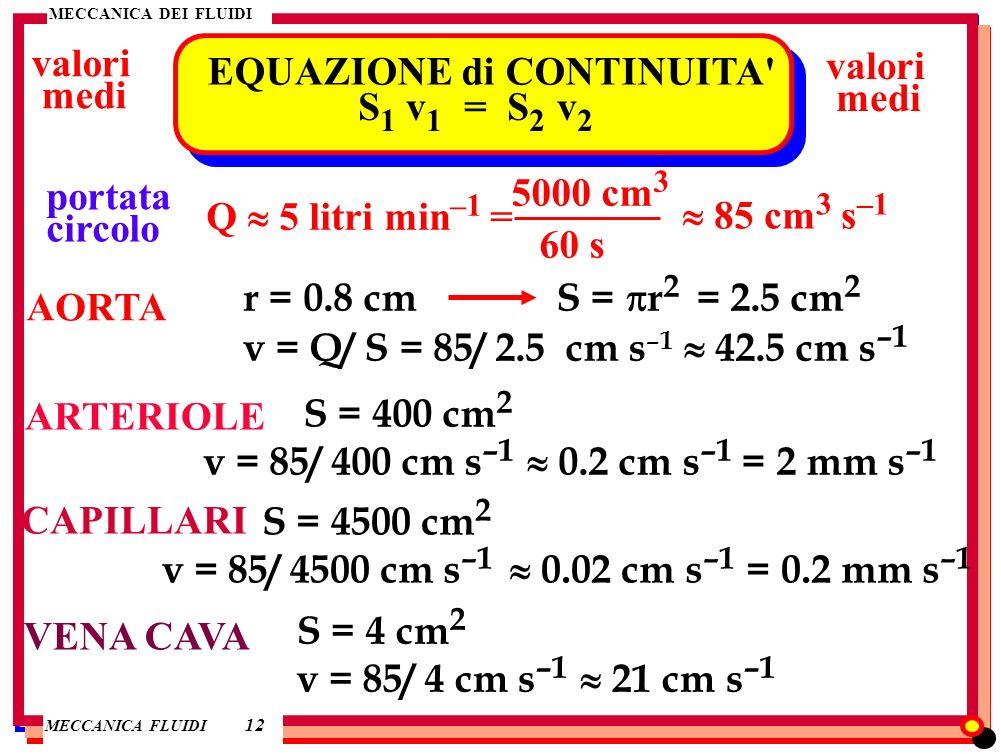 MECCANICA DEI FLUIDI MECCANICA FLUIDI MECCANICA DEI FLUIDI 12 EQUAZIONE di CONTINUITA' S 1 v 1 = S 2 v 2 valori medi valori medi portata circolo Q 5 l