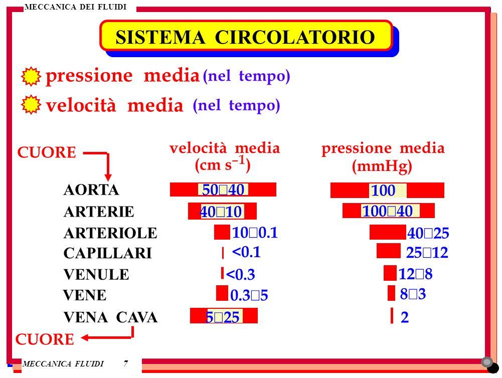 MECCANICA DEI FLUIDI MECCANICA FLUIDI MECCANICA DEI FLUIDI 7 SISTEMA CIRCOLATORIO pressione media velocità media (nel tempo) velocità media (cm s –1 )