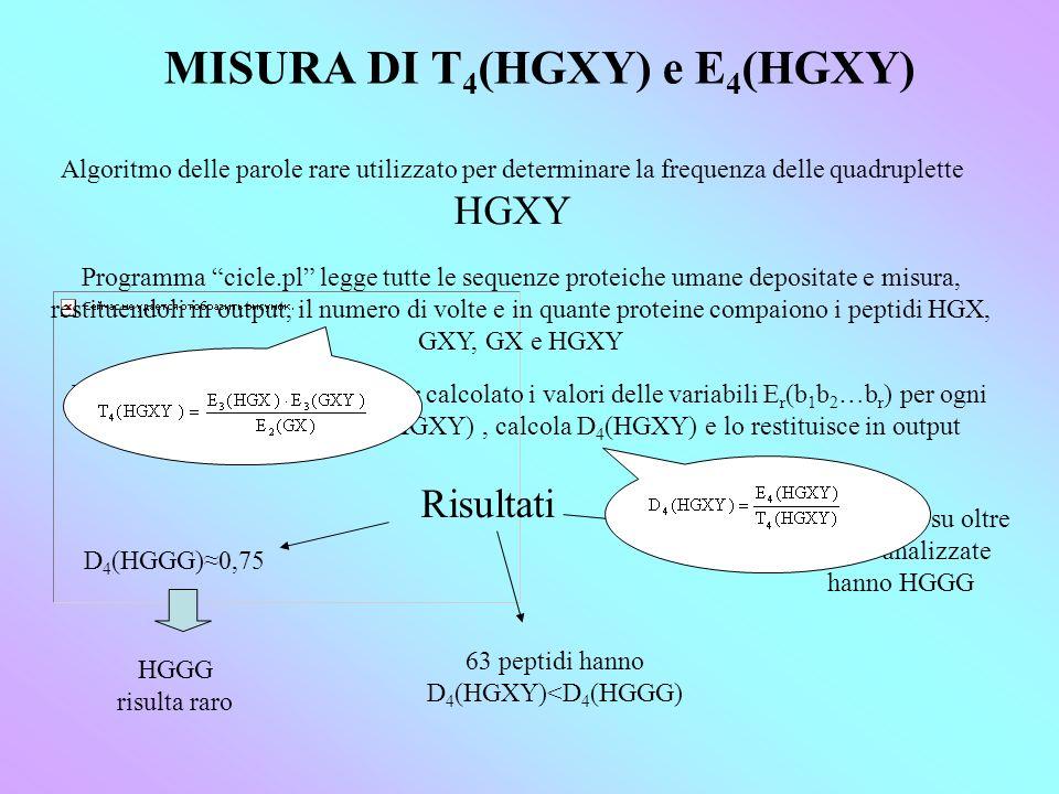 MISURA DI T 4 (HGXY) e E 4 (HGXY) Algoritmo delle parole rare utilizzato per determinare la frequenza delle quadruplette HGXY Programma cicle.pl legge tutte le sequenze proteiche umane depositate e misura, restituendoli in output, il numero di volte e in quante proteine compaiono i peptidi HGX, GXY, GX e HGXY Programma ratio.pl, dopo aver calcolato i valori delle variabili E r (b 1 b 2 …b r ) per ogni parola scelta e quello di T 4 (HGXY), calcola D 4 (HGXY) e lo restituisce in output Risultati D 4 (HGGG)0,75 HGGG risulta raro 63 peptidi hanno D 4 (HGXY)<D 4 (HGGG) 157 proteine su oltre 29760 analizzate hanno HGGG