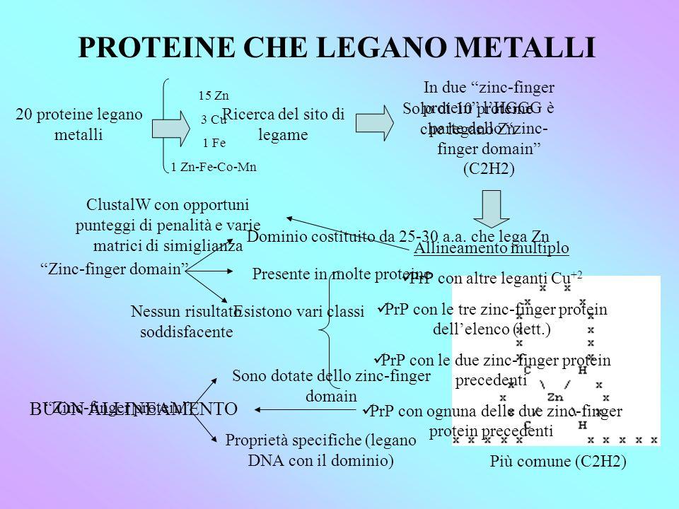 PROTEINE CHE LEGANO METALLI 20 proteine legano metalli 15 Zn 3 Cu 1 Fe 1 Zn-Fe-Co-Mn Ricerca del sito di legame Solo di 10 proteine che legano Zn In due zinc-finger protein lHGGG è parte dello zinc- finger domain (C2H2) Zinc-finger domain Dominio costituito da 25-30 a.a.