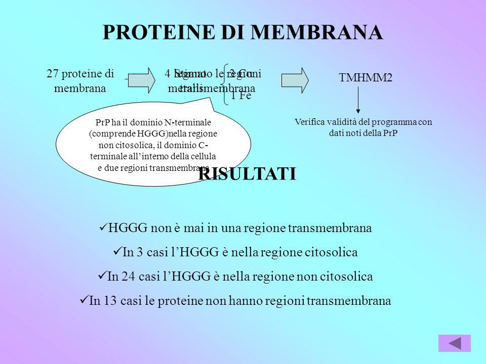 PROTEINE DI MEMBRANA 27 proteine di membrana 4 legano metalli 3 Cu 1 Fe Stimato le regioni transmembrana PrP ha il dominio N-terminale (comprende HGGG)nella regione non citosolica, il dominio C- terminale allinterno della cellula e due regioni transmembrana TMHMM2 RISULTATI HGGG non è mai in una regione transmembrana In 3 casi lHGGG è nella regione citosolica In 24 casi lHGGG è nella regione non citosolica In 13 casi le proteine non hanno regioni transmembrana Verifica validità del programma con dati noti della PrP