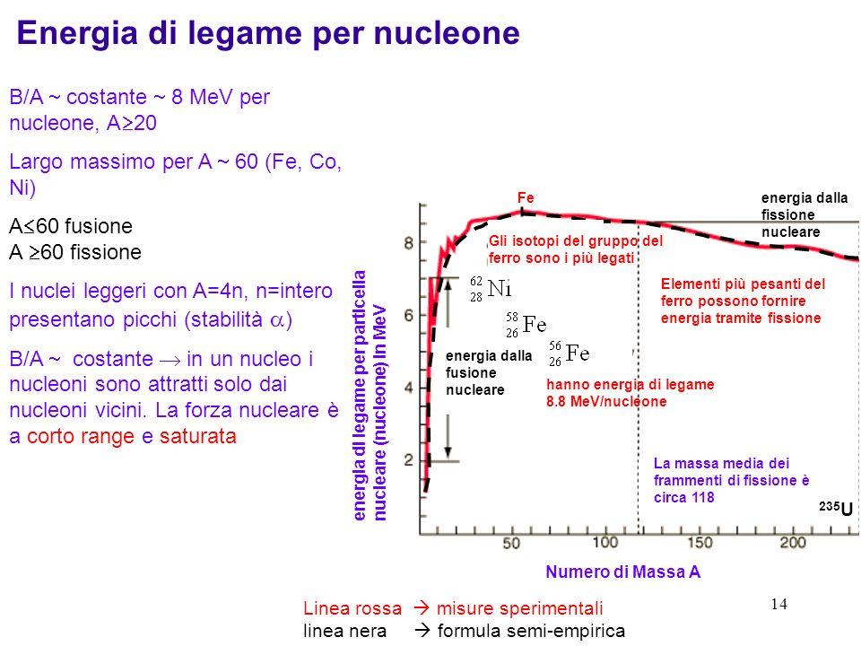 13 Le energie di separazione di protoni e neutroni sono lequivalente delle energie di ionizzazione in fisica atomica. Lenergia di separazione dei neut