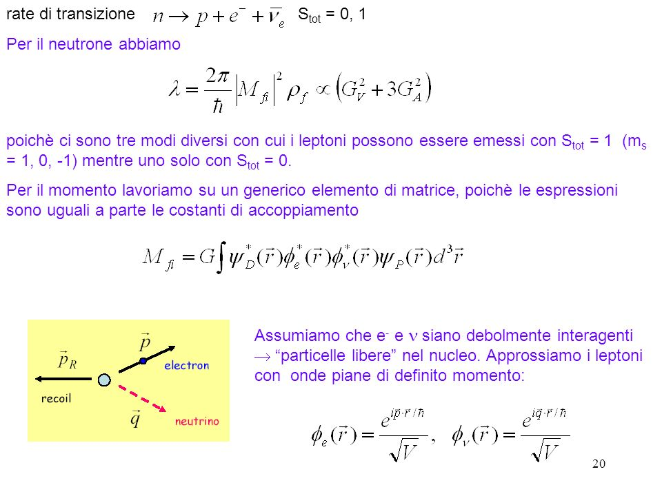 20 rate di transizione S tot = 0, 1 Per il neutrone abbiamo poichè ci sono tre modi diversi con cui i leptoni possono essere emessi con S tot = 1 (m s = 1, 0, -1) mentre uno solo con S tot = 0.
