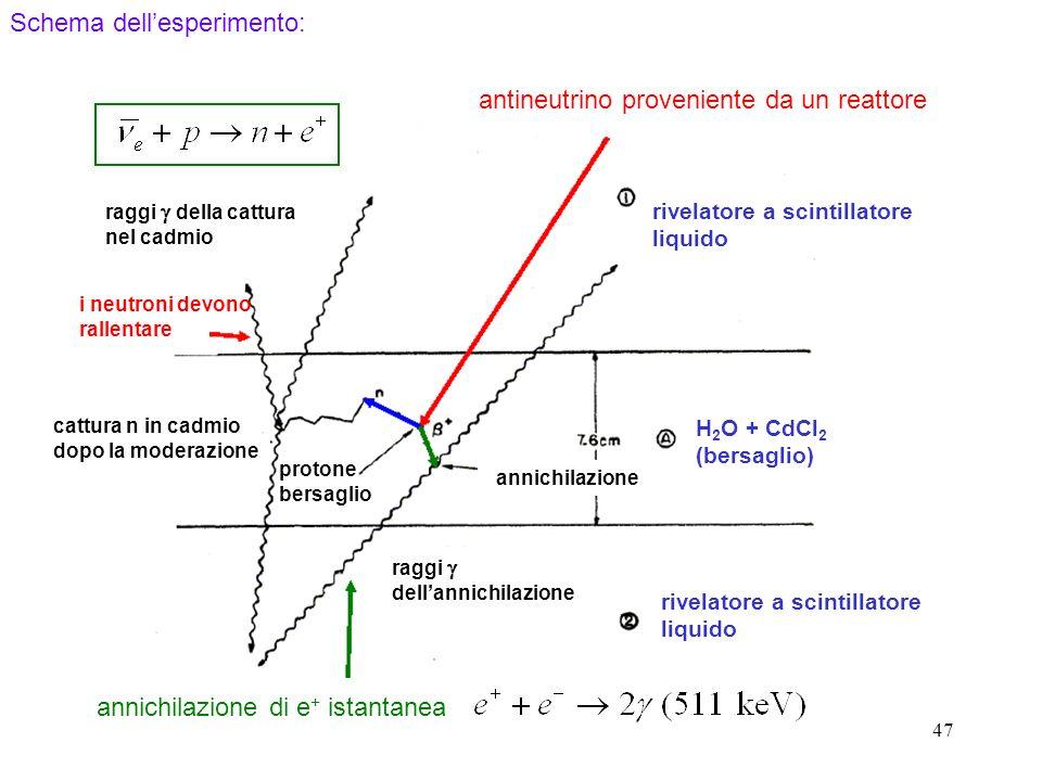 47 antineutrino proveniente da un reattore rivelatore a scintillatore liquido H 2 O + CdCl 2 (bersaglio) annichilazione raggi dellannichilazione protone bersaglio cattura n in cadmio dopo la moderazione raggi della cattura nel cadmio i neutroni devono rallentare annichilazione di e + istantanea Schema dellesperimento: