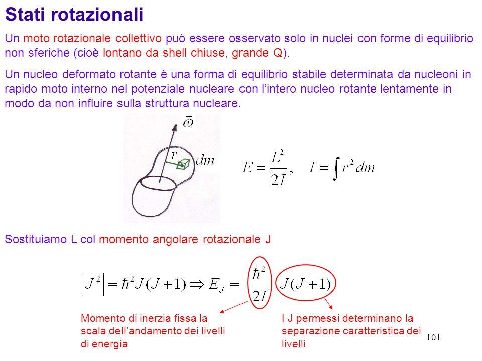 101 Stati rotazionali Un moto rotazionale collettivo può essere osservato solo in nuclei con forme di equilibrio non sferiche (cioè lontano da shell c