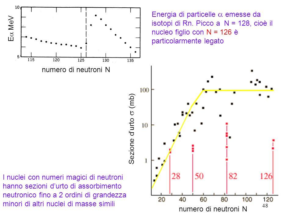 48 Energia di particelle emesse da isotopi di Rn. Picco a N = 128, cioè il nucleo figlio con N = 126 è particolarmente legato E MeV Sezione durto (mb)