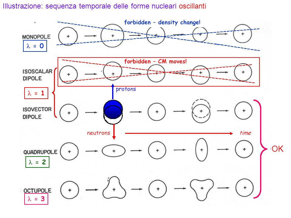 97 Illustrazione: sequenza temporale delle forme nucleari oscillanti OK