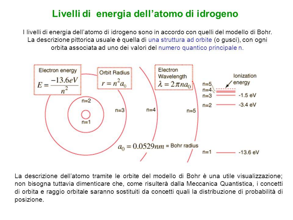I livelli di energia dellatomo di idrogeno sono in accordo con quelli del modello di Bohr. La descrizione pittorica usuale è quella di una struttura a