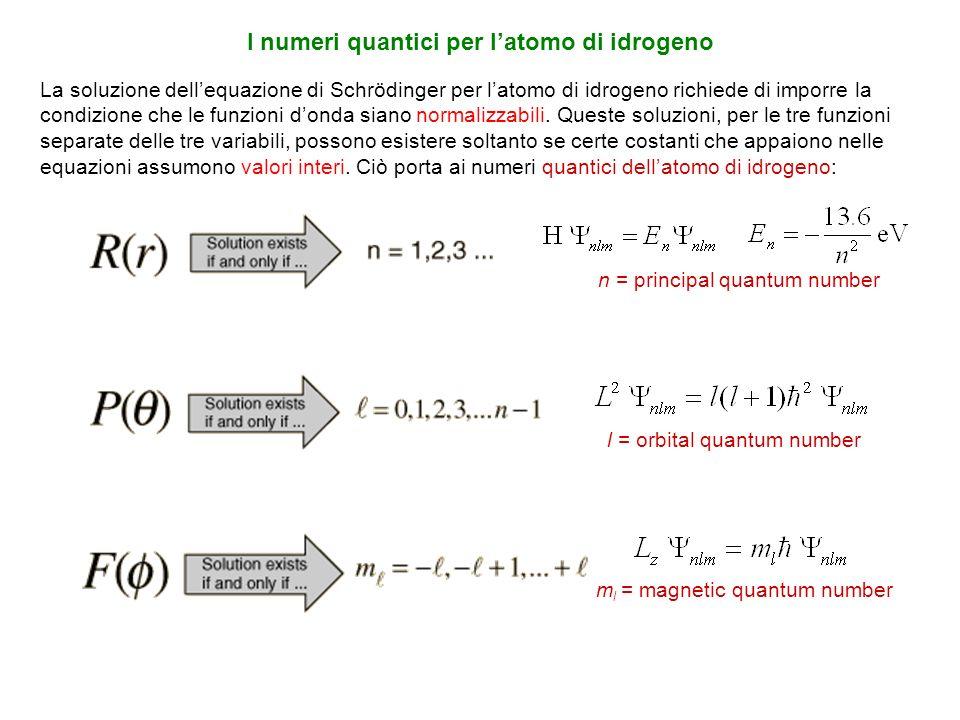 La soluzione dellequazione di Schrödinger per latomo di idrogeno richiede di imporre la condizione che le funzioni donda siano normalizzabili. Queste