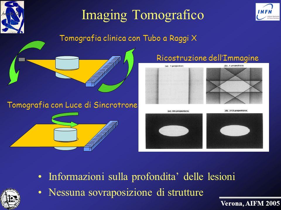 Verona, AIFM 2005 Imaging Tomografico Informazioni sulla profondita delle lesioni Nessuna sovraposizione di strutture Tomografia clinica con Tubo a Raggi X Tomografia con Luce di Sincrotrone Ricostruzione dellImmagine