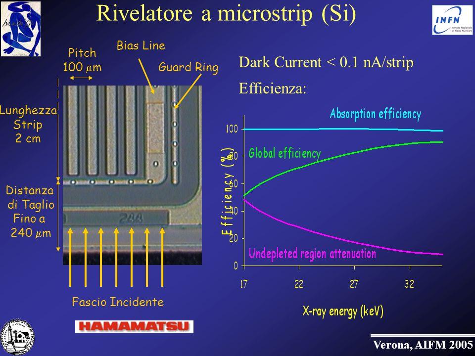Verona, AIFM 2005 Rivelatore a microstrip (Si) Dark Current < 0.1 nA/strip Efficienza: Distanza di Taglio Fino a 240 m Guard Ring Bias Line Fascio Incidente Pitch 100 m Lunghezza Strip 2 cm
