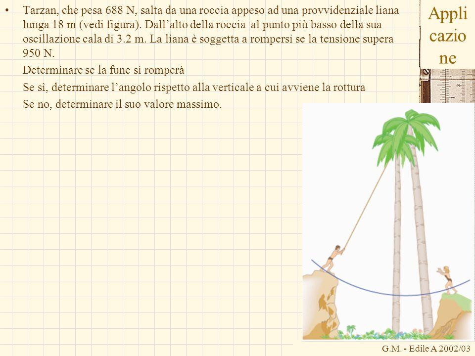 G.M. - Edile A 2002/03 Appli cazio ne Tarzan, che pesa 688 N, salta da una roccia appeso ad una provvidenziale liana lunga 18 m (vedi figura). Dallalt