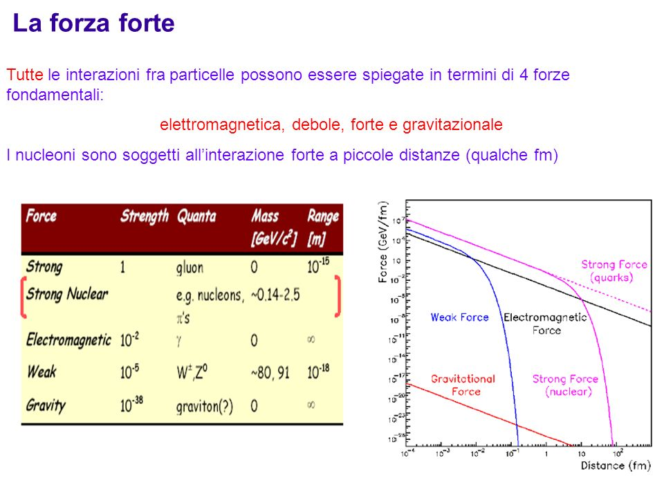 1 La forza forte Tutte le interazioni fra particelle possono essere spiegate in termini di 4 forze fondamentali: elettromagnetica, debole, forte e gra