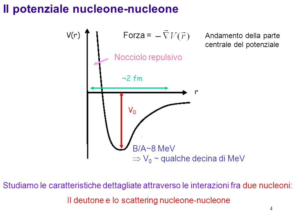 4 Il potenziale nucleone-nucleone Studiamo le caratteristiche dettagliate attraverso le interazioni fra due nucleoni: Il deutone e lo scattering nucle