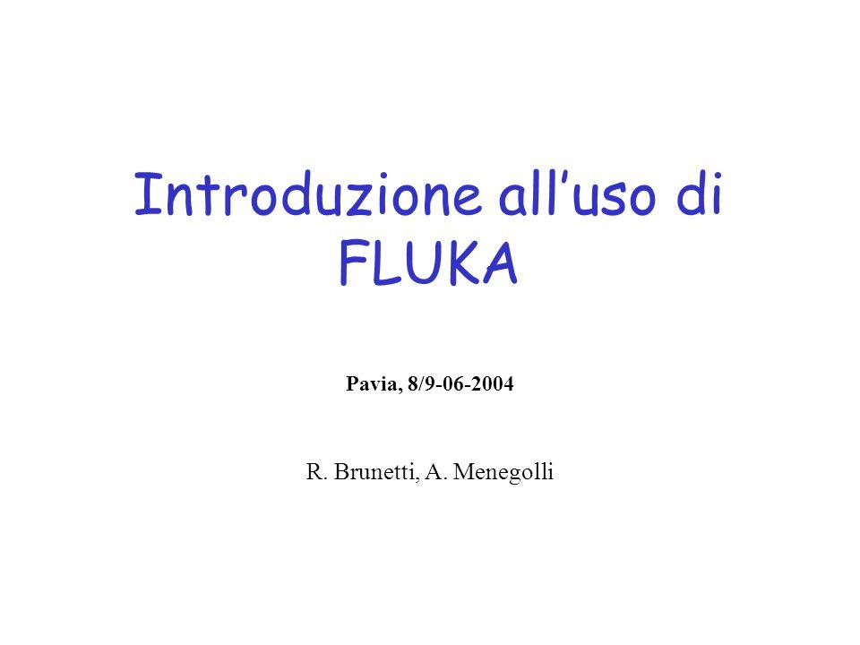 Introduzione alluso di FLUKA Pavia, 8/9-06-2004 R. Brunetti, A. Menegolli