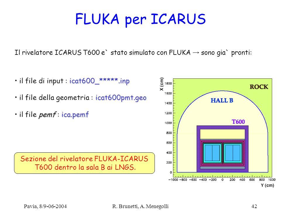 Pavia, 8/9-06-2004R. Brunetti, A. Menegolli42 FLUKA per ICARUS Il rivelatore ICARUS T600 e` stato simulato con FLUKA sono gia` pronti: Sezione del riv