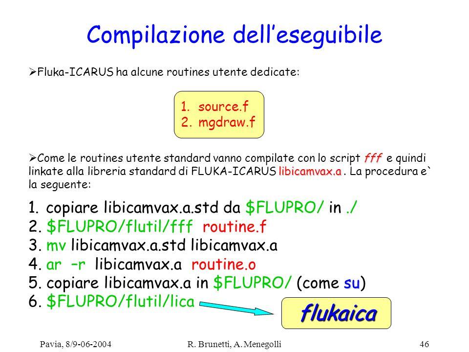 Pavia, 8/9-06-2004R. Brunetti, A. Menegolli46 Compilazione delleseguibile Fluka-ICARUS ha alcune routines utente dedicate: 1.source.f 2.mgdraw.f fff l