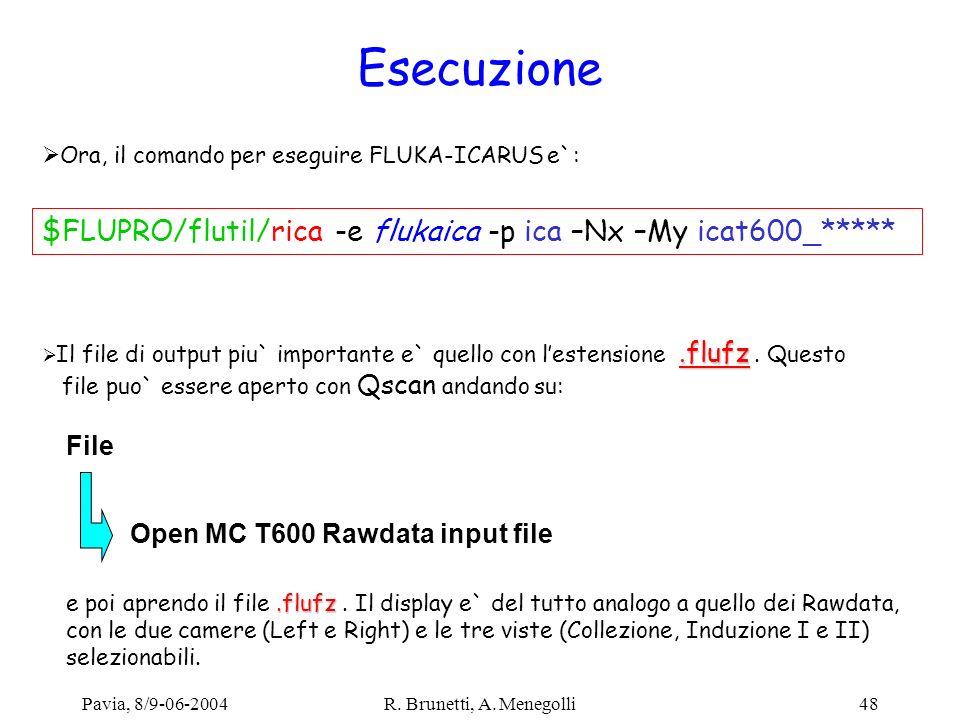 Pavia, 8/9-06-2004R. Brunetti, A. Menegolli48 Esecuzione Ora, il comando per eseguire FLUKA-ICARUS e`: $FLUPRO/flutil/rica -e flukaica -p ica –Nx –My