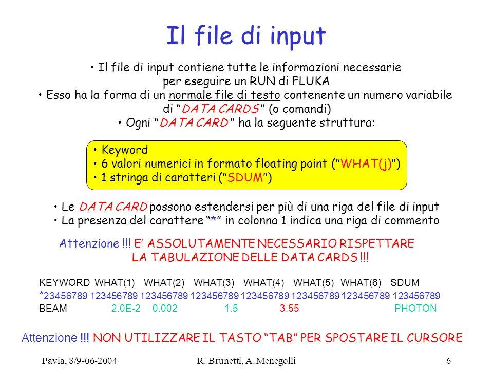 Pavia, 8/9-06-2004R. Brunetti, A. Menegolli6 Il file di input Il file di input contiene tutte le informazioni necessarie per eseguire un RUN di FLUKA