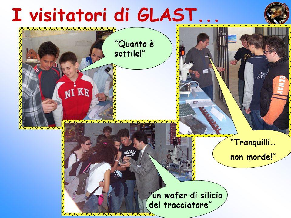 I visitatori di GLAST... un wafer di silicio del tracciatore Quanto è sottile! Tranquilli… non morde!