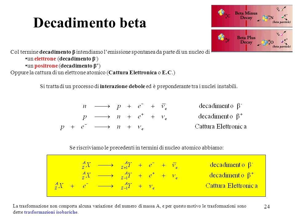 24 Col termine decadimento β intendiamo lemissione spontanea da parte di un nucleo di un elettrone (decadimento β - ) un positrone (decadimento β + )