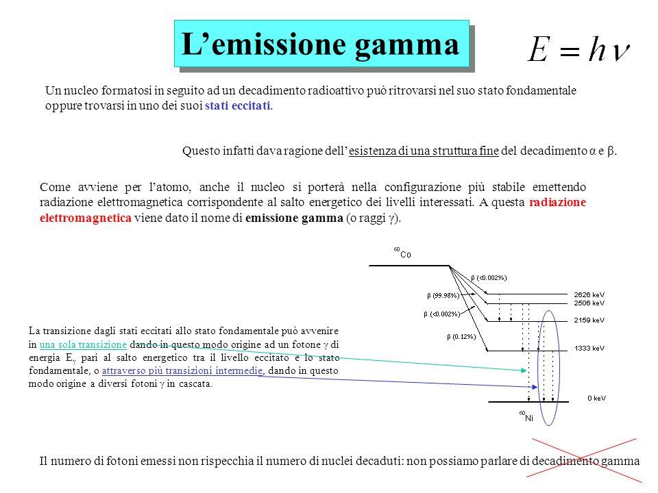 Lemissione gamma Un nucleo formatosi in seguito ad un decadimento radioattivo può ritrovarsi nel suo stato fondamentale oppure trovarsi in uno dei suo