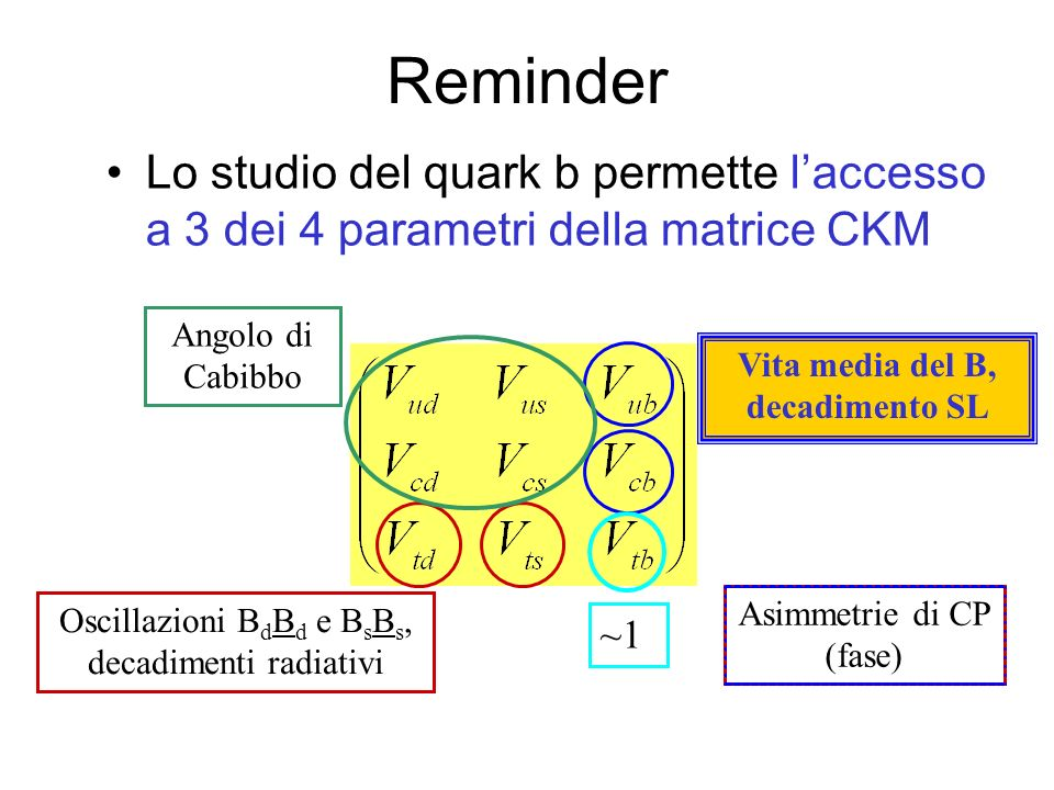 Reminder Lo studio del quark b permette laccesso a 3 dei 4 parametri della matrice CKM Angolo di Cabibbo Oscillazioni B d B d e B s B s, decadimenti radiativi Vita media del B, decadimento SL ~1 Asimmetrie di CP (fase)