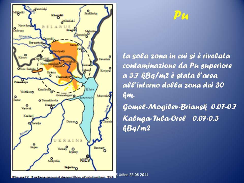 Pu La sola zona in cui si è rivelata contaminazione da Pu superiore a 3.7 kBq/m2 è stata larea allinterno della zona dei 30 km. Gomel-Mogilev-Briansk
