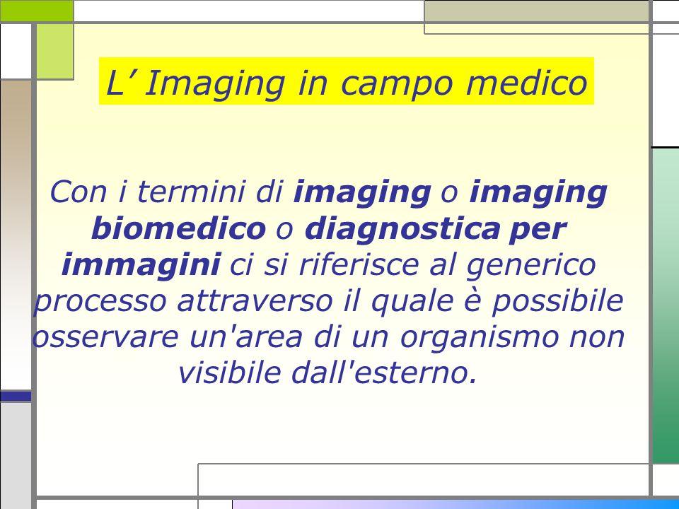 Con i termini di imaging o imaging biomedico o diagnostica per immagini ci si riferisce al generico processo attraverso il quale è possibile osservare