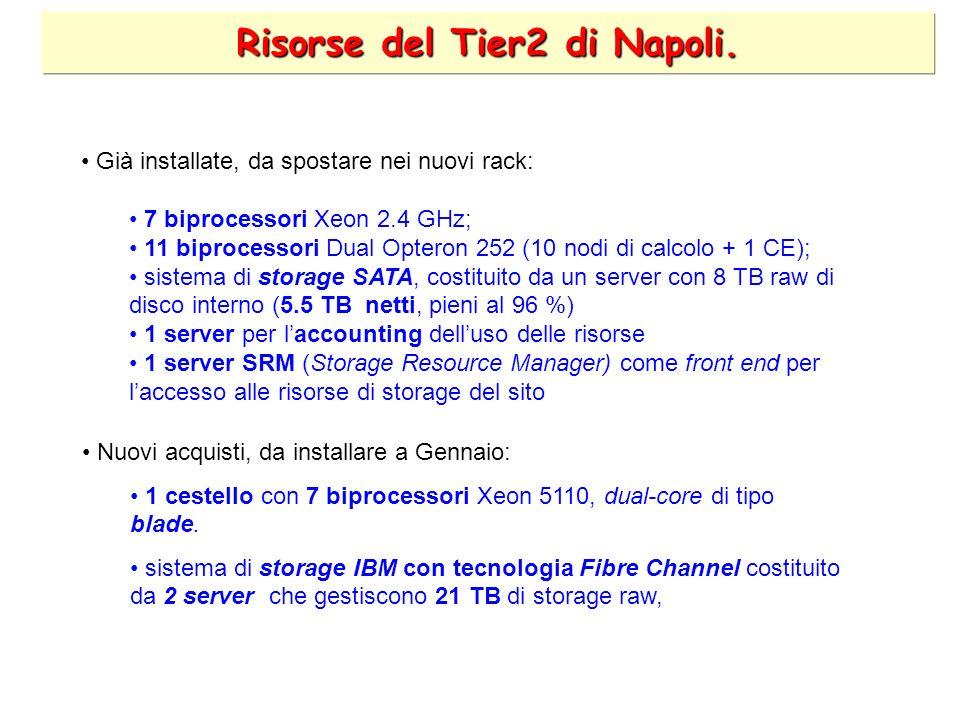 Risorse del Tier2 di Napoli.