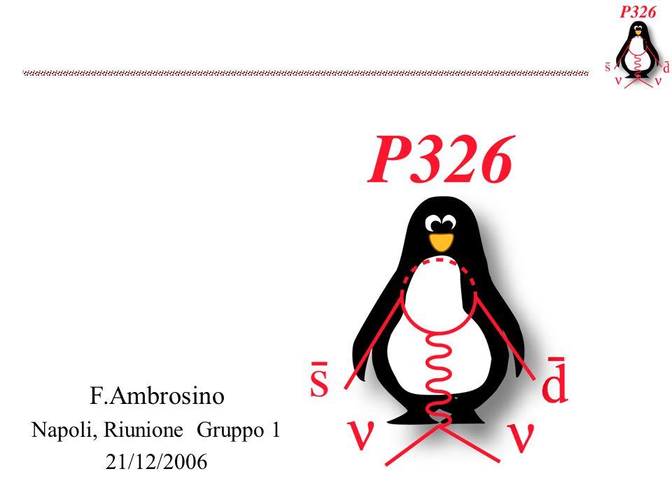 F.Ambrosino Napoli, Riunione Gruppo 1 21/12/2006